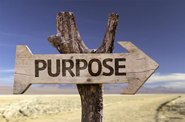 Finding Purpose & Passion